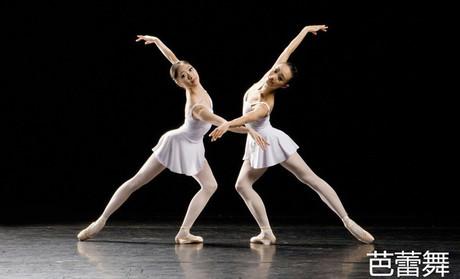 我们开设少儿及成人舞蹈基本功,爵士舞,民族舞,古典舞,形体芭蕾,拉丁